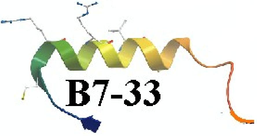 B7-33