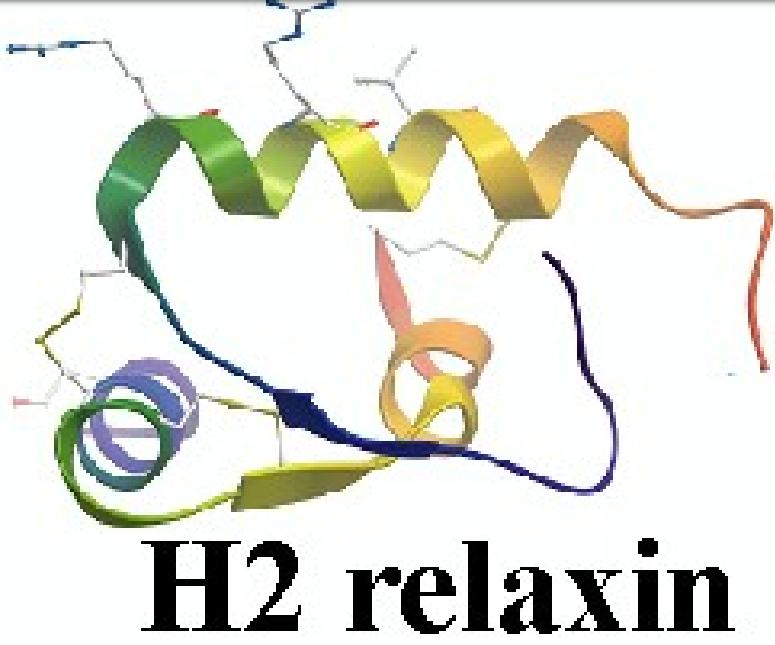 H2 Relaxin